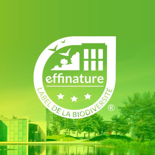 Effinature